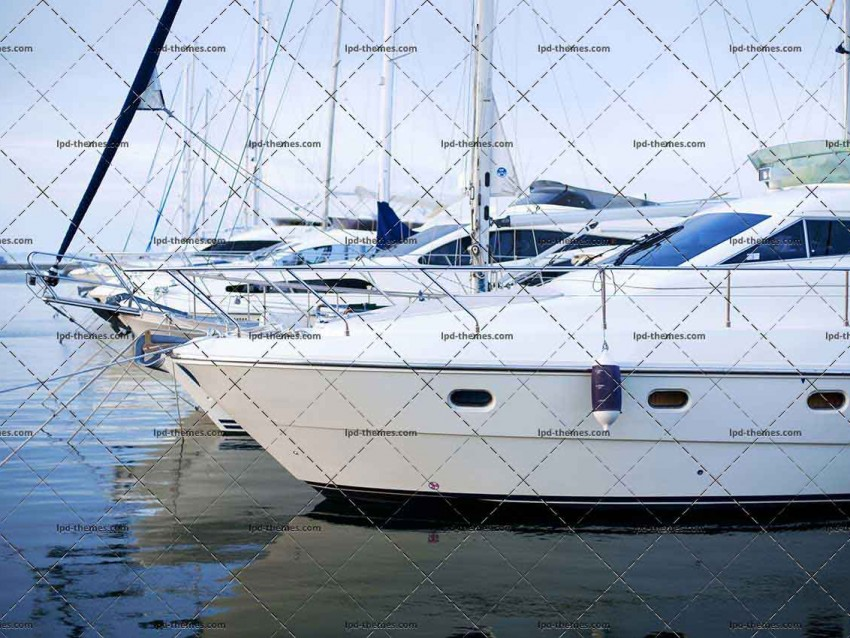 The Moored Yachts